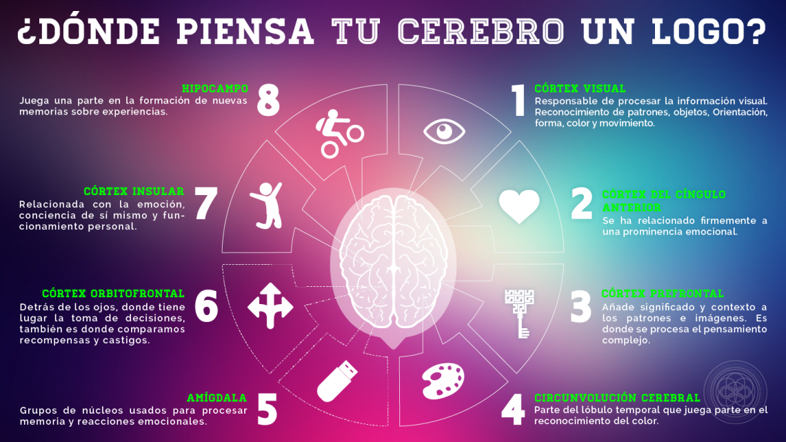 Roxana Soto Ostos, Neuromarketing, Logotipos, Cerebro, Marcas, Cortex Visual
